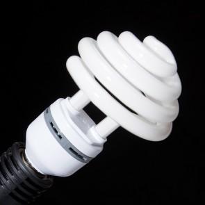 Żarówka studyjna światła stałego 35W