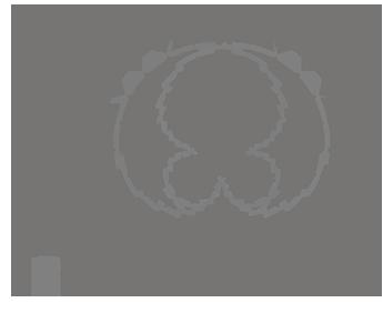 Charakterystyka kierunkowa BY-VM300PS
