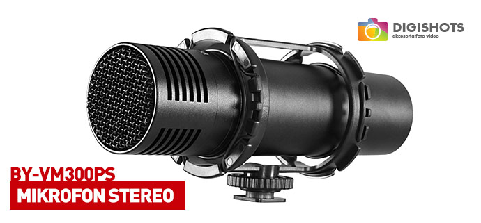 Mikrofon stereo