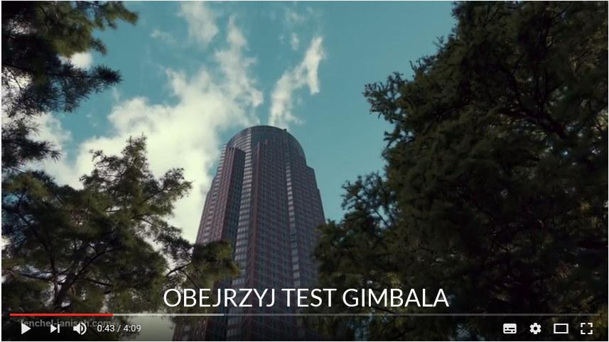Gimbal Crane
